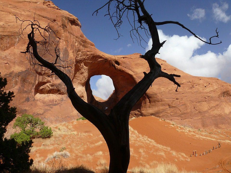 Entdecken Sie die Canyons und Täler der USA